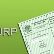 Consultation CURP y Rfc
